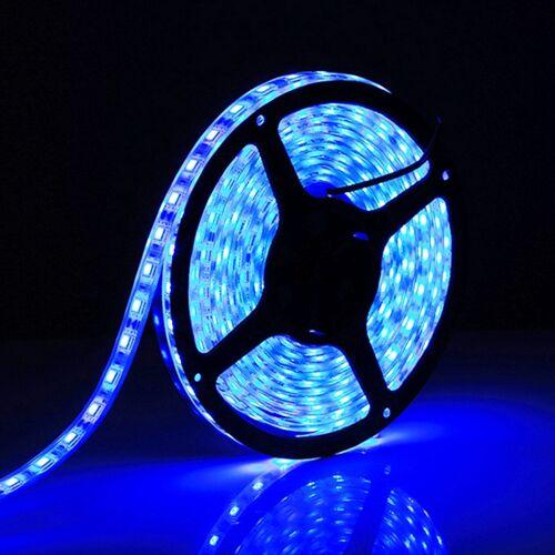 5m SMD 5050 irrigatie Rope Light 300 LEDs IP68 waterdicht DC 12V(Blue Light)