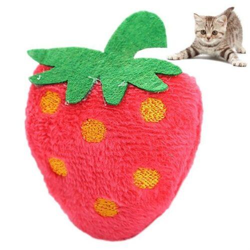 5 PC'S kat speelgoed kat Mint fruit dierlijke pluche speelgoed huisdier speelgoed (aardbei)