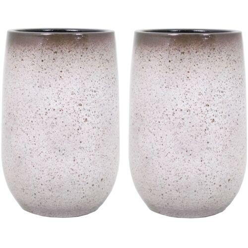 Floran 2x stuks bloempot vaas mat wit flakes keramiek voor bloemen/planten H40 x D22 cm -