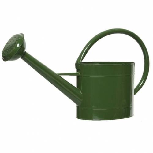 Decoris Donkergroene zinken tuinbewatering/kamerplanten gieters 5 liter -