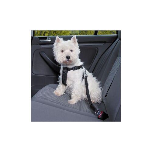 Brekz Wandel- en Autoharnas met Gordel voor de hond S