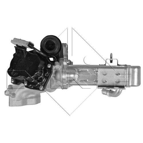 Nrf EGR module 48203