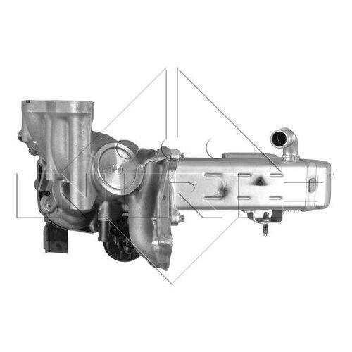 Nrf EGR module 48204