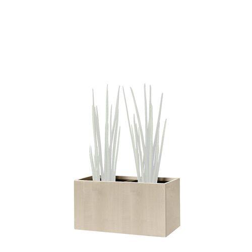 Plantenbak, kniehoog, voor 2 planten