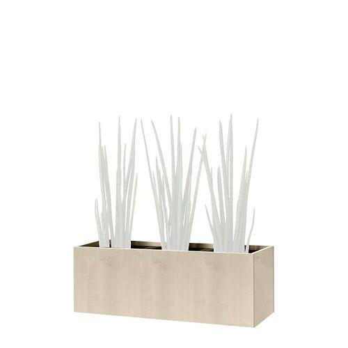 Plantenbak, kniehoog, voor 3 planten
