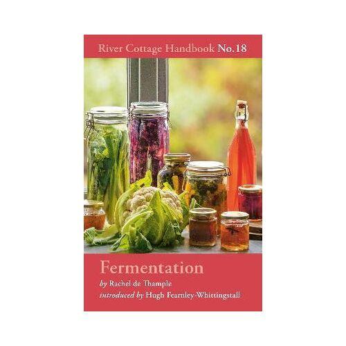 Fermentation by Rachel de Thample