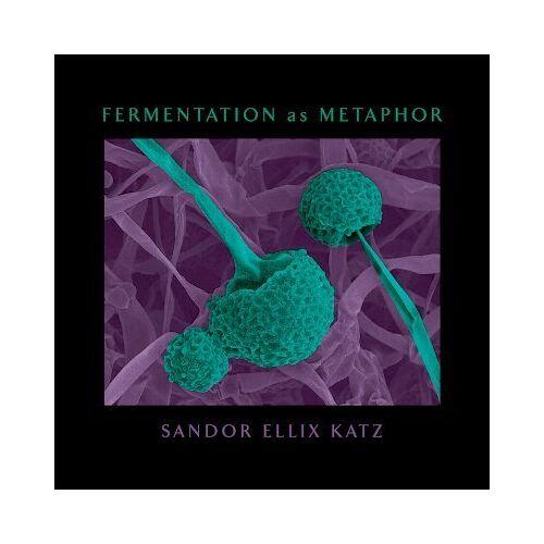 Fermentation as Metaphor by Sandor Ellix Katz