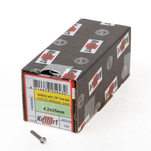 Kelfort Anti-inbraakschroef zelftappend RVS A2 4.2 x 25mm