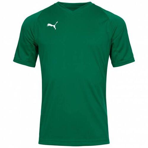 PUMA Liga Pro Heren Handbalshirt 703411-05  - groen - Size: Large