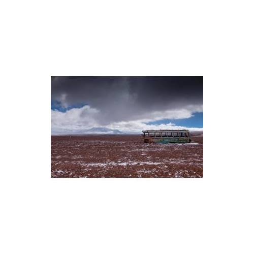 ART Get Art Into the wild 1 kunstfotografie 40x60 Dibond digitaal