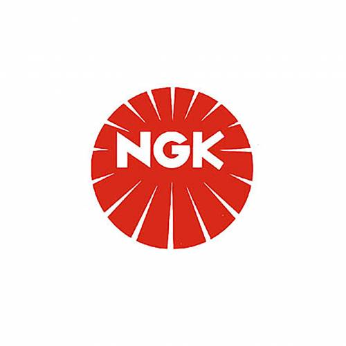 NGK Bougie NGK REANIMATIE9EAIX-9 -