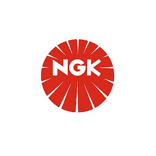 NGK Bougie NGK REANIMATIE8EAIX-9 -