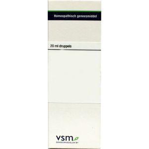 VSM Anacardium orientale d4