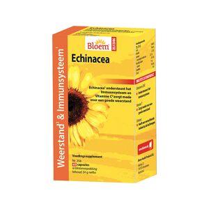 Bloem Echinacea extra weerstand