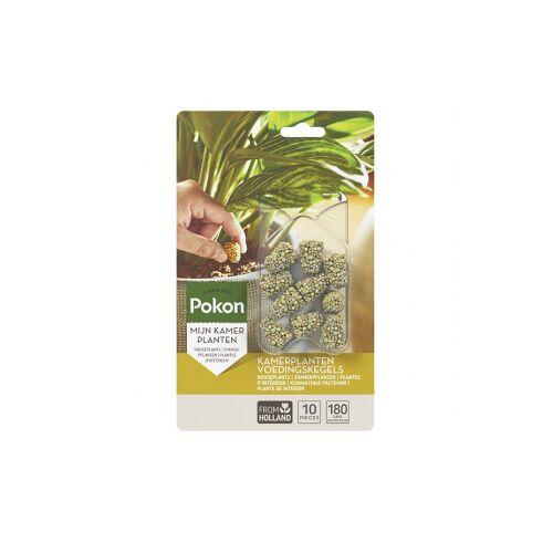 Pokon kamerplanten voedingskegels (10 stuks)