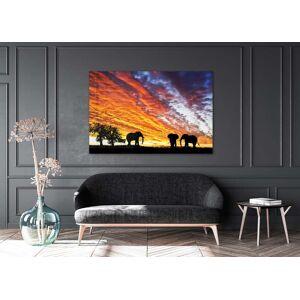 Boschbedding Olifanten zonsondergang