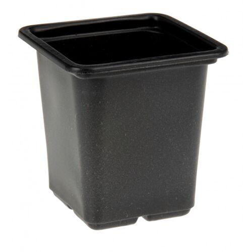Pro Garden kweekpotten 7,5 x 7,5 x 8 cm zwart 12 stuks - Zwart