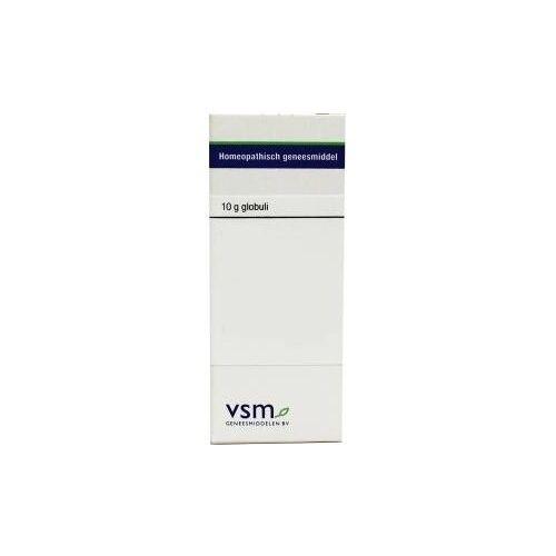 VSM Bryonia cretica D4 (10 gram)