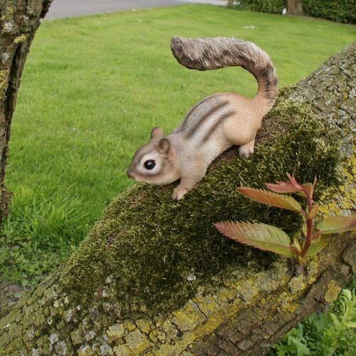Eekhoorn op pad