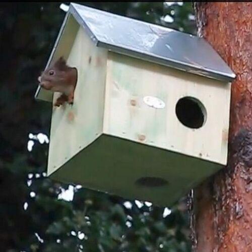 Woonhuisje voor eekhoorns naturel hout