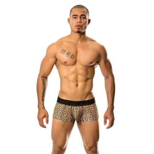 GIGO Pride Trunk Boxershort