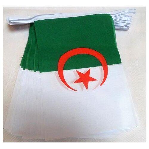 AZ FLAG Algerije 6 meter BUNTING Vlag 20 vlaggen 9'' x 6'' Algerijnse STRING vlaggen 15 x 21 cm