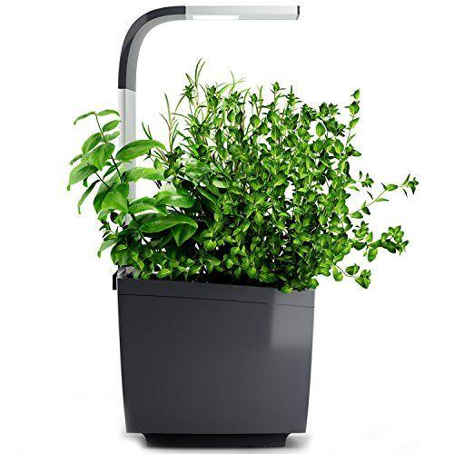 Tregren T3 indoor-planten met 3 planten, set voor kweken en vrijstaande bloembak voor kruiden, groenten, bloemen – teelt met smartphone-app – grijs
