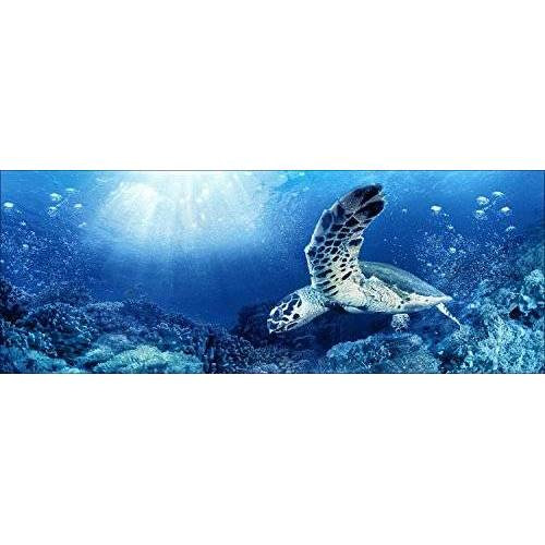 ART Pro-Art gla1078o Muurschildering Glas-Art 'Blue Sea I' 125 x 50 cm