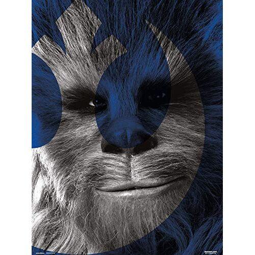 Grupo Erik Art Print, Star Wars Aflevering IX Chewbacca, 30 x 40 cm