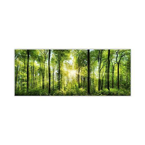 STYLER EX121 glazen afbeelding, glas, groen, 0,4 x 125 x 50 cm