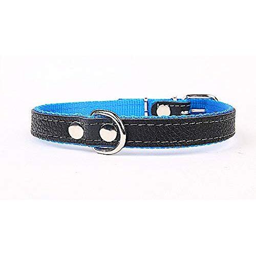 Capadi Hondenhalsband/hondenhalsband/hondenhalsband/hondenhalsband van echt leer, blauw, breedte: 16 mm, lengte: 41 cm
