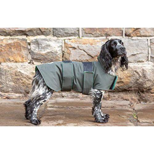 Dog & Field Hond & Veld 2-in-1 Waterdichte Hond Jas, S