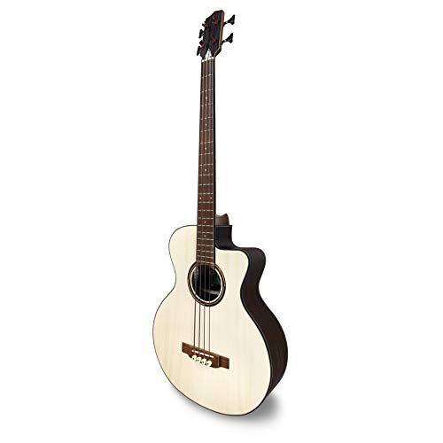 BG300 PSI CW APC Instruments  Bass Gitaar