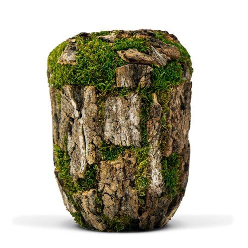 Biologische Eco urn van kurk met mos