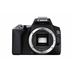 Canon EOS 250D Camera, 24, 1 megapixel, 7,7 cm (3 inch), vari-angle display, APS-C-sensor, 4K, Full-HD, DIGIC 8, WLAN, Bluetooth, zilver, incl. EF-S 18-55 mm f/4-5.6 IS STM objectief, zilver