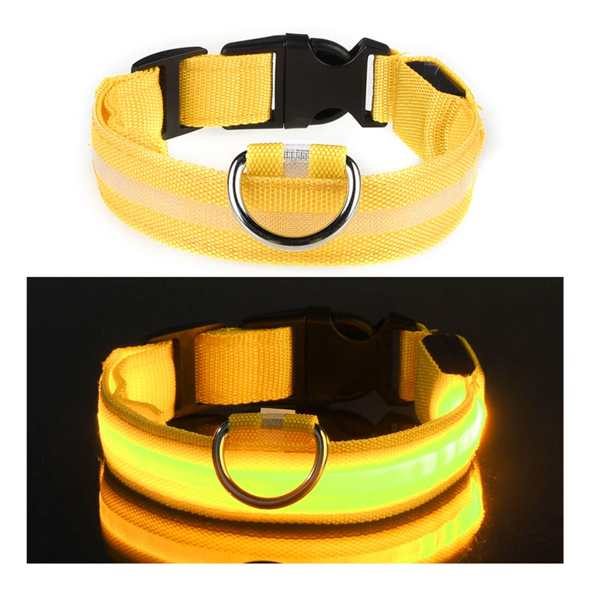 LED Hundehalsbånd - Gul – Medium