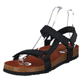 Scholl Heaven AD Black, Shoes, brun, EU 45