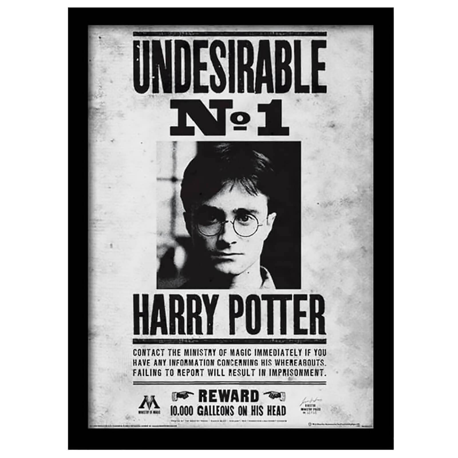 Pyramid International Harry Potter Undesirable No.1 Framed 30 x 40cm Print