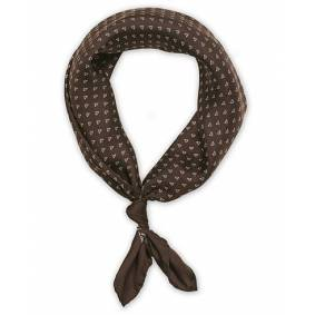 Ralph Lauren Purple Label Dotted Scarf Brown