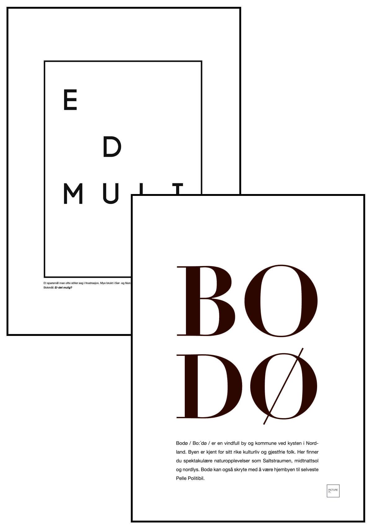 pictureit BODØ + E D MULI poster
