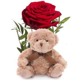 Romantisk rose med bamse