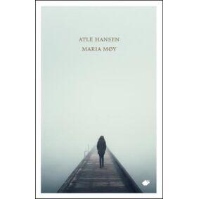 Atle Hansen Maria møy: roman