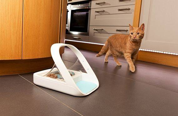 Sure petcare SureFeed Microchip Pet Feeder