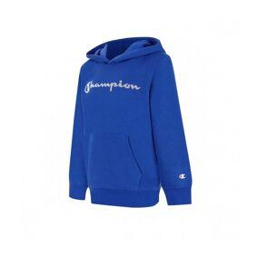 Champion Hooded Sweatshirt L (152) BS003