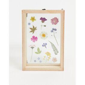 Sass & Belle pressed flowers photo frame-Multi  Multi