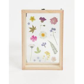 Sass & Belle pressed flowers photo frame-Multi  Multi