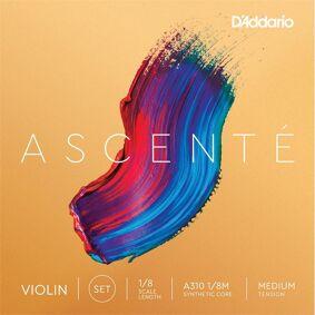 D'Addario A310 1/8m Violin Strings Ascenté Set 1/8 Medium Tension