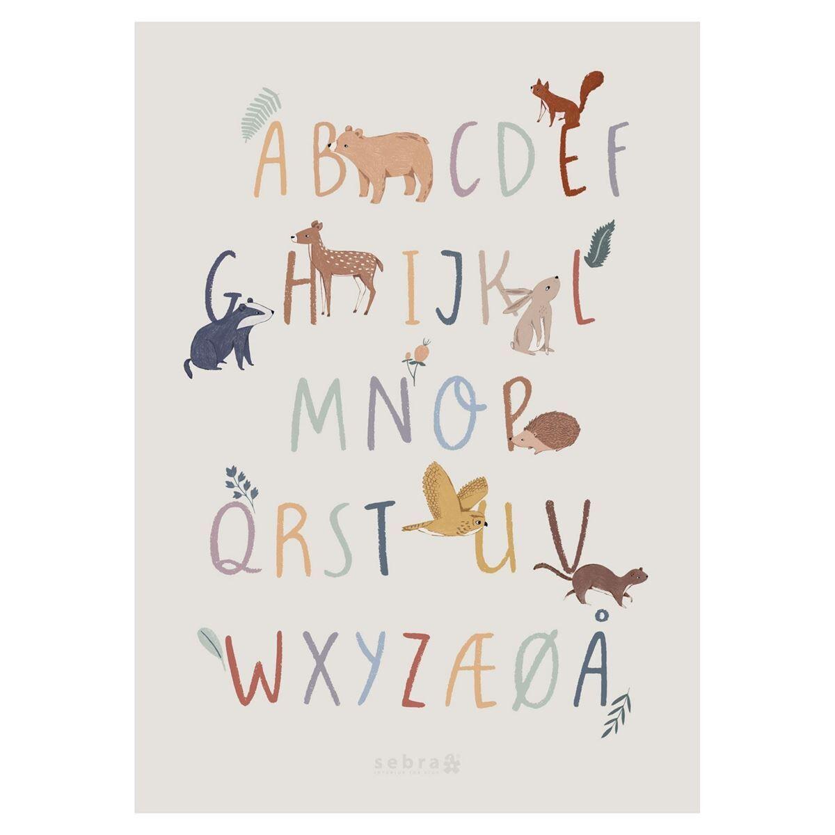 Sebra Poster, Alfabetet A-Å, Nightfall