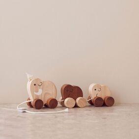 Kids Concept Mammutfamile Draleke, Natur, Neo