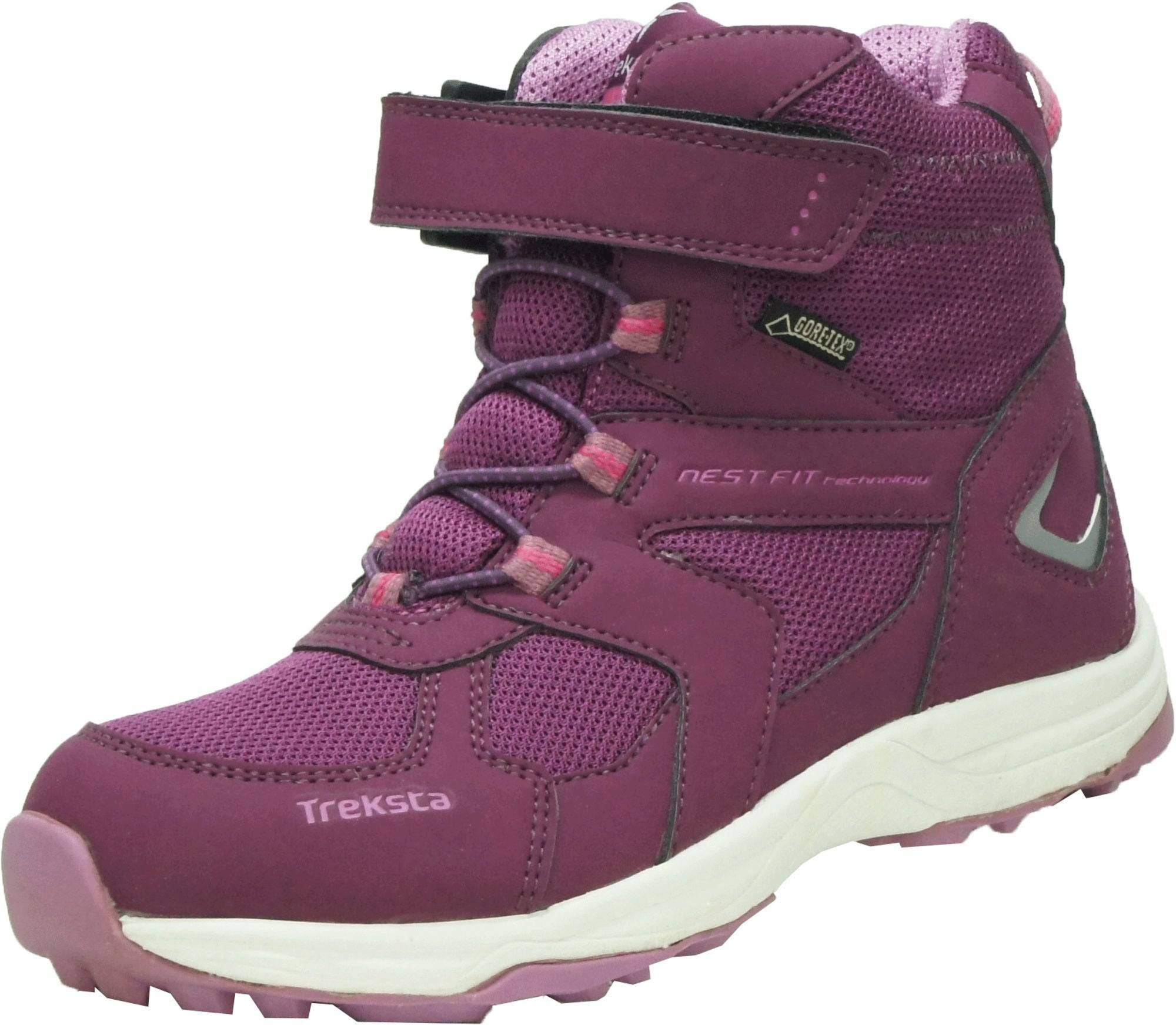 Treksta Arrow GTX Vintersko, Purple 27